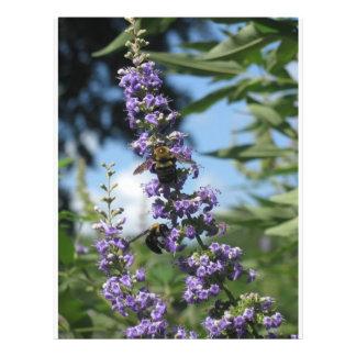 insectos de trabalho das abelhas flyer 21.59 x 27.94cm