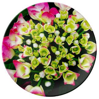 Inspiração do Hydrangea Prato De Porcelana