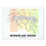 Interior da formiga do trabalhador (anatomia da convite 10.79 x 13.97cm