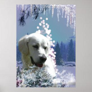 Inverno de labrador retriever pôsteres