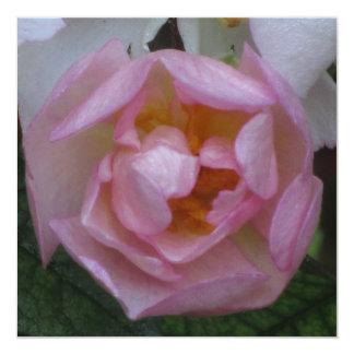 Invitación - festa Cumpleaños - La Rosa Rosa Convite Quadrado 13.35 X 13.35cm