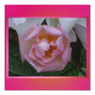 Invitación - Festa de Cumpleaños - La Rosa Rosa Convite Quadrado 13.35 X 13.35cm
