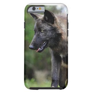 iPhone preto 6 do lobo Capa Tough Para iPhone 6