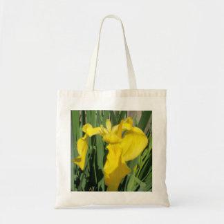 Íris amarela bolsas
