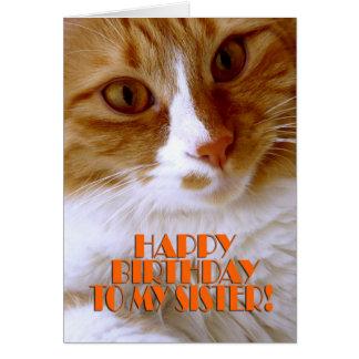 Irmã do feliz aniversario - gato doce cartão comemorativo