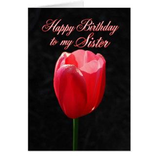 Irmã vermelha do feliz aniversario da tulipa cartão comemorativo