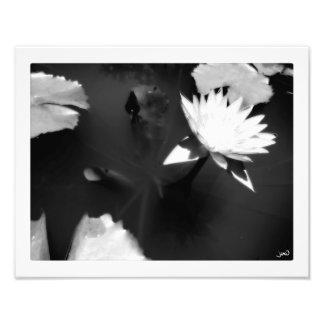 Irradiação Impressão De Foto