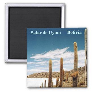 Isla del Pescado, Salar de Uyuni, Bolívia Ima De Geladeira