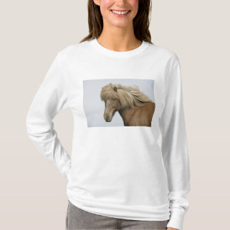 Islândia. Retrato de um cavalo islandês Camiseta