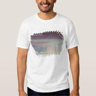Israel, Mar Morto, Ein Bokek, Mar Morto, Camisetas