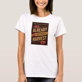 Já à colheita. A camisa das mulheres de LDS