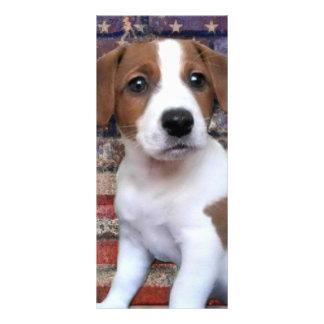 Jack patriótico Russel Terrier 10.16 X 22.86cm Panfleto