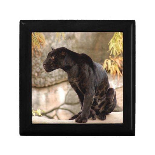 jaguar-10 porta jóia