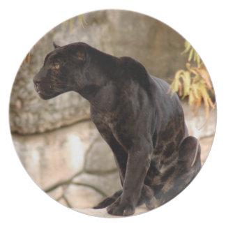 jaguar-10 pratos de festas