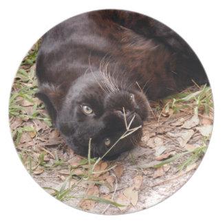 Jaguar 3519 louças de jantar