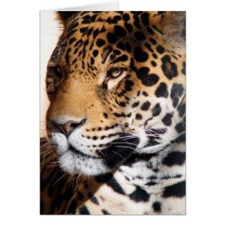 Jaguar Cartão Comemorativo
