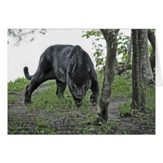 Jaguar preto que desengaça o cartão