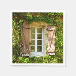 Janela francesa da casa da quinta & guardanapo de