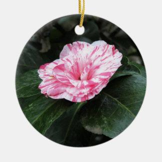 Japonica listado único vermelho da camélia da flor ornamento de cerâmica