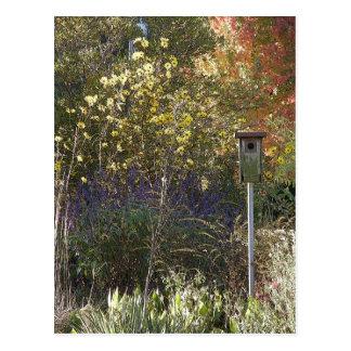 Jardim 1 da casa do Bluebird Cartão Postal