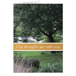 Jardim calmo da árvore - cartões de simpatia