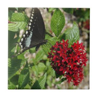 Jardim da borboleta azulejo