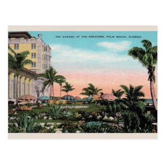 Jardim de chá do vintage no cartão do Palm Beach