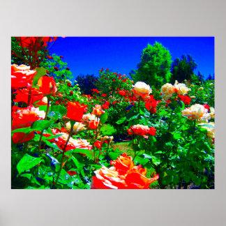 Jardim de rosas psicadélico poster