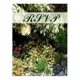 Jardim de RSVP Cartões Postais