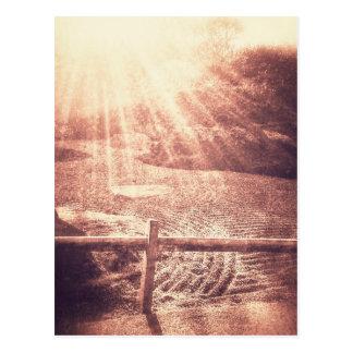 Jardim do zen cartão postal