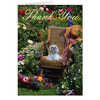 Jardim dos cartões de agradecimentos de Shih Tzu