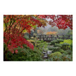 Jardim japonês em um poster nevoento da manhã da q