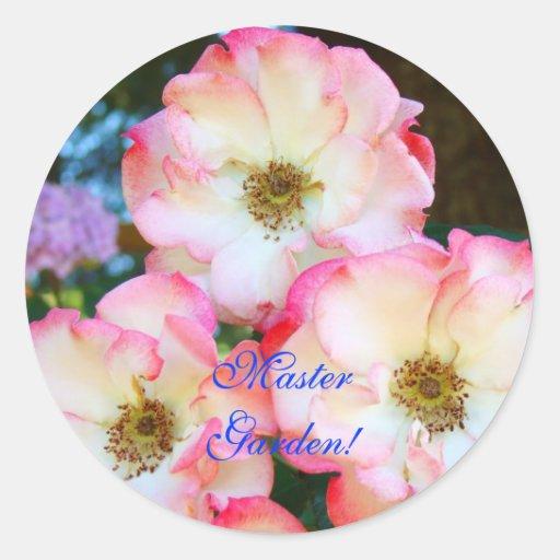 jardim rosas vermelhas:Jardim mestre! rosas vermelhas brancas cor-de-rosa adesivo redondo