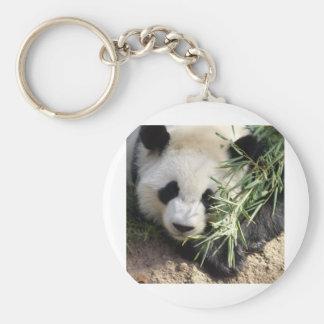Jardim zoológico Atlanta do urso de panda @ Chaveiro