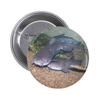 Jardim zoológico da pesca do peixe-gato bóton redondo 5.08cm