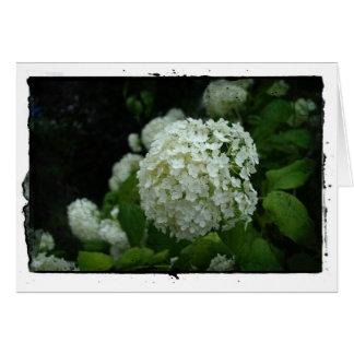 Jardins da suecia cartão comemorativo