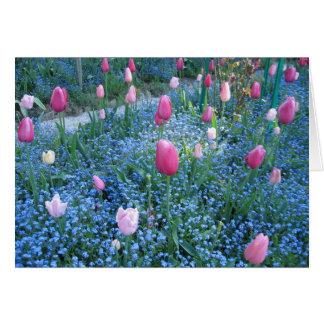 Jardins de Monet, cartões de agradecimentos de