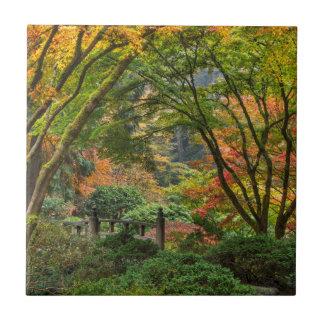 Jardins japoneses no outono em Portland, Oregon 4