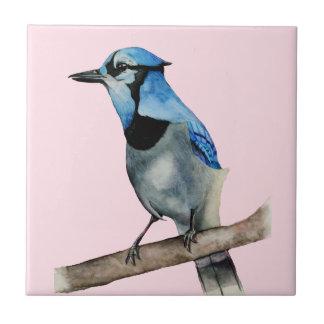 Jay azul na pintura da aguarela do ramo
