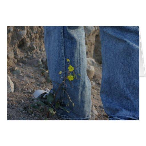 Jeans e flores cartoes