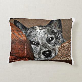 Jessie… o travesseiro de Texas Heeler Almofada Decorativa