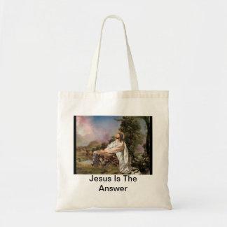 Jesus é o bolsa da resposta