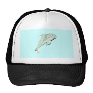 jGibney 2009 de Daytona Beach do golfinho O MUSEU Bones
