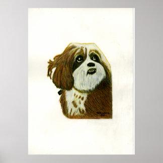 jGibney do cão de Murphy 1 O MUSEU Zazzle