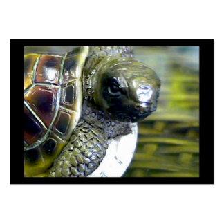 jGibney Ed Ato-Aberto do ovo Art1 da tartaruga do Modelo Cartão De Visita
