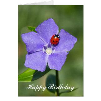 Joaninha bonito no cartão de aniversário da
