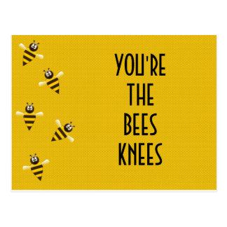 joelhos das abelhas cartão postal