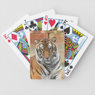 Jogo De Baralho Alugueres Tigres no projecto