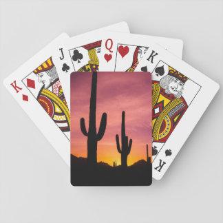 Jogo De Baralho Cacto do Saguaro no nascer do sol, arizona