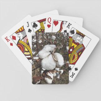 Jogo De Baralho Campo do algodão, close up macio do algodão